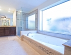 Master Bath Shower Jacuzzi Tub